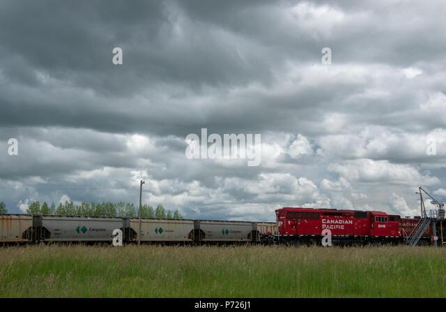 P726J1.jpg